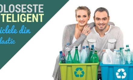 10 idei creative de a reutiliza sticlele din plastic